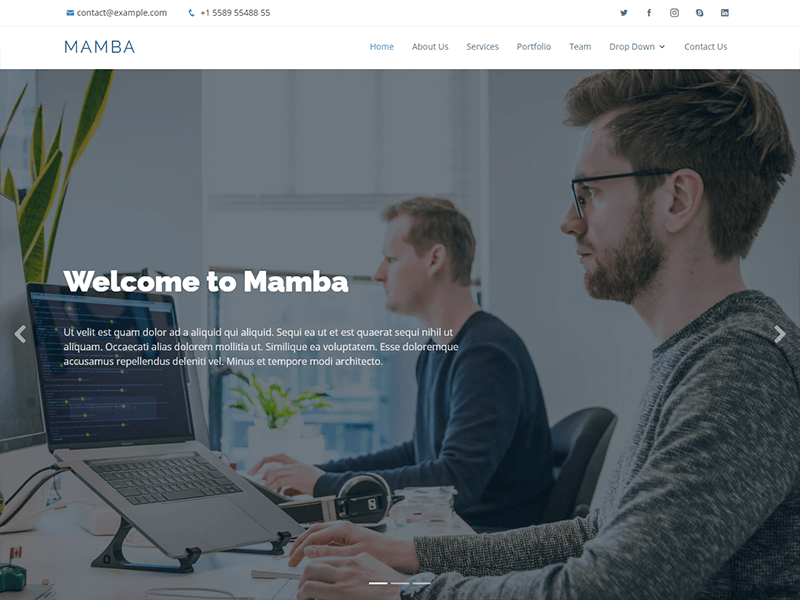 Mamba - Free One Page Bootstrap Template