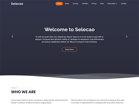 Selecao – Agency Bootstrap Template